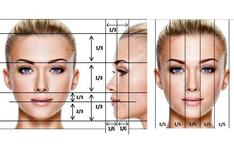 Analisi del volto: le proporzioni
